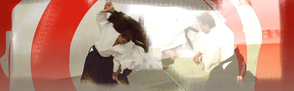 Seikokan Dojo Yoshinkan Aikido In Windsor Traditional Yoshinkan